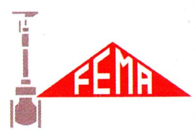 fema-srl